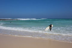 Surfer with golden sand on Corralejo beach Canary islands Spain Stock Photography