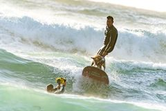 Surfer with his Surfer Dog Surfing royalty free stock image