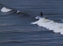 Surfer holding oar in wetsuit negotiating waves  on Tynemouth Be. Ach in UK on a winter morning Royalty Free Stock Images