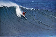 Surfer Ian Walsh Surfing Pipeline in Hawaii Royalty Free Stock Photo