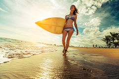 Surfer lady on the beach Royalty Free Stock Images