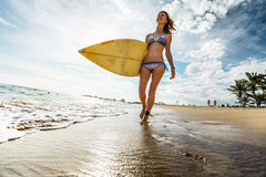 Surfer lady with board Stock Image