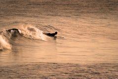 Surfer in Lagos Portugal Royalty-vrije Stock Foto's