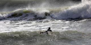 Surfer in Levanto. Between surfer beach waves of Levanto La Spezia Liguria royalty free stock photos