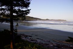 Surfer on misty Cox Bay, Tofino, British Columbia, Canada Stock Photography