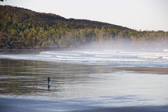 Surfer on misty Cox Bay, Tofino, British Columbia, Canada Stock Photos