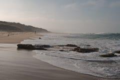 Surfer in morning dusk Royalty Free Stock Image