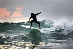 Surfer in ocean Royalty Free Stock Image