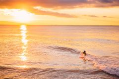 Surfer in ocean at bright sunset or sunrise. Winter surfing in sea. Surfer in ocean at bright sunset or sunrise. Winter surfing Royalty Free Stock Images