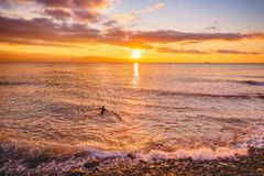 Surfer in ocean at bright warm sunset or sunrise. Surfing in ocean. Surfer in ocean at bright warm sunset or sunrise. Surfing in sea Stock Photos