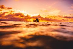 Surfer in ocean at sunset or sunrise. Winter surfing in ocean. Surfer in ocean at sunset or sunrise. Winter surfing Stock Photo