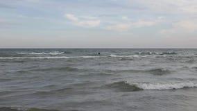 Surfer. stock video