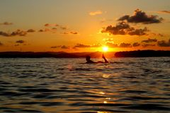 A surfer paddles through the sun set in Indonesia royalty free stock photo