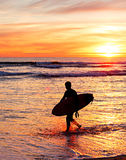 Surfer, Portugal Stock Photography