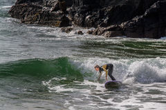 Surfer in Ribeira de Ilhas Beach in Ericeira Portugal. Royalty Free Stock Images