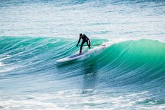 Surfer in wet suit on stand up paddle board on ocean waves. Stand up paddle boarding in sea. Surfer ride on stand up paddle board on ocean wave. Stand up paddle Royalty Free Stock Photo