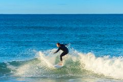 Surfer ride wave surfboard Portugal royalty free stock photography