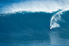 Surfer Rides GIant Wave at Jaws Stock Photos