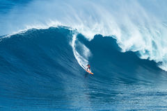 Surfer Rides GIant Wave at Jaws Stock Photography