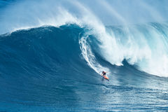 Surfer Rides GIant Wave at Jaws Stock Images