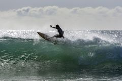 A surfer rides a point break wave at Arugam Bay in Sri Lanka. Royalty Free Stock Photo