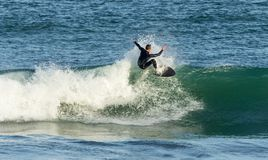 Surfer riding crest of wave, Fistral, Cornwall royalty free stock photo