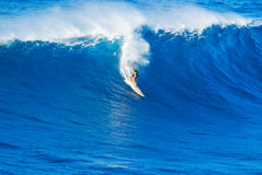 Surfer riding giant wave. Extreme surfer riding giant ocean wave in Hawaii Royalty Free Stock Images