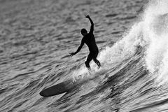 Surfer Riding Large Wave Black and White. Imsouane, Morocco - February 2018:   Surfer riding large wave on long board Royalty Free Stock Image