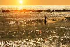 Surfer riding the wave. The silhouette of a surfer riding a wave early mornig Royalty Free Stock Images