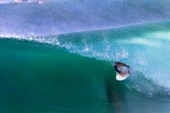 Surfer Ridng τέλειος χρώματος γύρος σωλήνων κυμάτων μπλε Στοκ φωτογραφίες με δικαίωμα ελεύθερης χρήσης