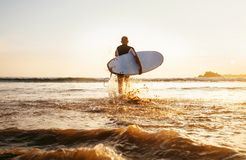 Surfer runs with surfboard towards ocean waves ta sunset time Royalty Free Stock Photography