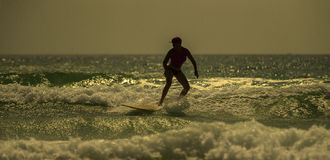 Surfer`s morning. Picture of woman Surfing a Wave royalty free stock photography
