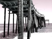 Surfer's Pier royalty free stock image