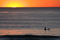 Surfer's Sunset. Surfer in the water with the sunset behind him Stock Photos