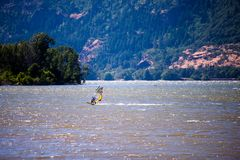 Surfer with sail rushes down the wind on the Columbia River in C. The surfer enjoying a walk with sail under the fresh summer wind along the Columbia River in Stock Images