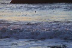 Surfer in San Francisco Lands End Royalty-vrije Stock Afbeeldingen