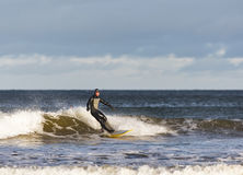 Surfer scene in Moray, Scotland, United Kingdom. Royalty Free Stock Photos
