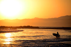 Surfer Silhouette on beach. A shot of a Surfer watching the sun set over the Sea Royalty Free Stock Image