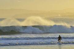 Surfer Silhouette slipping through the water royalty free stock image