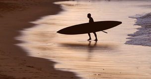 Surfer silhouette at sunrise. Nothing better than an early morning surf at sunrise with glowing reflections in the water royalty free stock photos