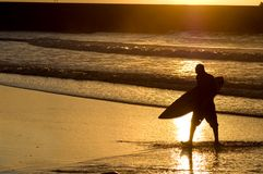 Surfer silhouette at the sunset Stock Photo
