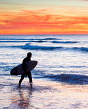 Surfer silhouette Royalty Free Stock Image