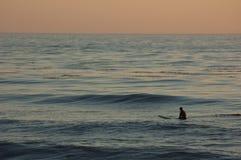Surfer am Sonnenuntergang Lizenzfreies Stockbild