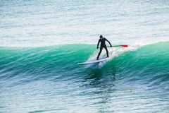 Surfer on stand up paddle board on blue wave. Paddle surfing in ocean. Surfer on stand up paddle board on wave. Winter surfing in sea Stock Image