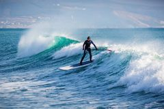 Surfer on stand up paddle board ride at wave. Winter surfing in ocean. Surfer riding on stand up paddle board on big wave. Winter surfing in sea Royalty Free Stock Photography