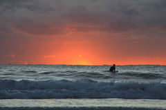 A Surfer at Sunrise Stock Photography