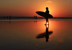 Surfer on sunset Royalty Free Stock Image