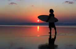 Surfer on sunset Stock Images