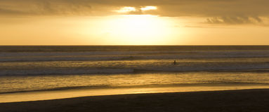 Surfer in sunset Stock Images