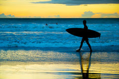 Surfer at sunset, Bali island Royalty Free Stock Photo